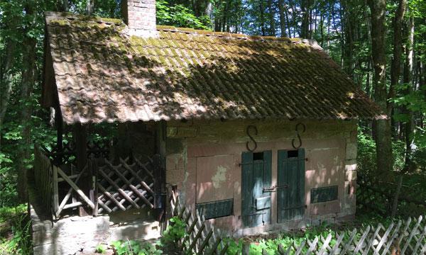 wisent-tour-eulbach-saustall